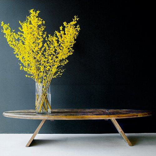 アイテム画像(Eclipse Coffee Table)メイン